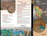 Graffiti Removal & Protection brochure