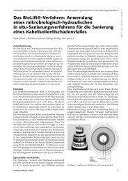 Anwendung eines in situ Sanierungsverfahrens für ... - Sensatec Berlin