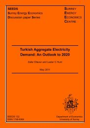 Turkish Aggregate Electricity Demand: An Outlook to 2020