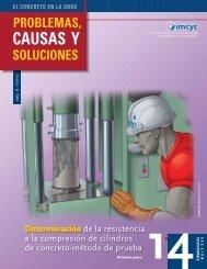CAUSAS Y - Instituto Mexicano del Cemento y del Concreto