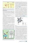 10 - Nederlandse Vereniging van bioMedisch ... - Page 5