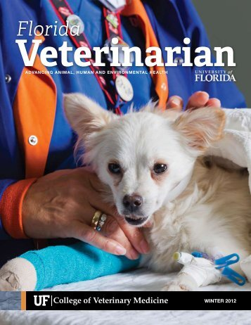 Veterinarian - University of Florida College of Veterinary Medicine
