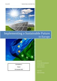 Implementing a Sustainable Future