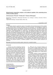 Ultrastructural comparative analysis on the adhesive papillae of the ...