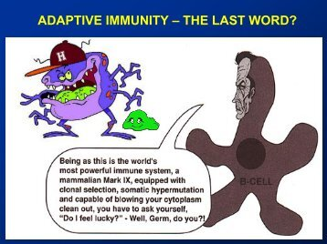 Lecture adaptive immunity.pdf
