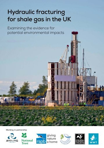 shale_gas_report_evidence_tcm9-365779