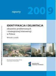 Identyfikacja i delimitacja obszarów problemowych - Instytut Badań ...