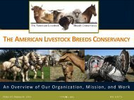 About ALBC Presentation with slides only - American Livestock ...