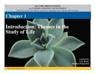 Chapter 1 Powerpoint SCC
