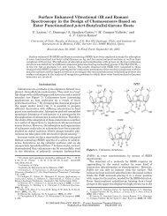 Surface Enhanced Vibrational (IR and Raman) - Instituto de ...
