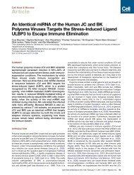 Yoav, Bauman.pdf - UCSF RNA Journal Club