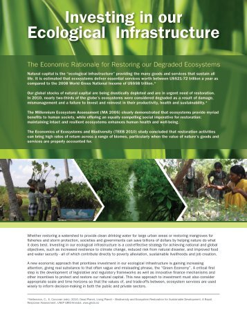 Investing in our Ecological Infrastructure - Global Restoration Network