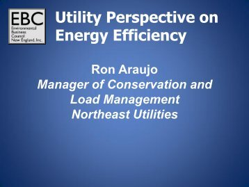 Utility Perspective on Energy Efficiency