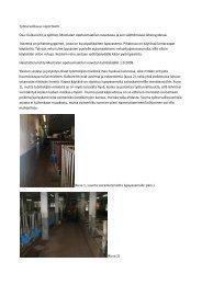 Työturvallisuus raportointi Osa: Kulkureitit ja työtilat, Mustialan ...