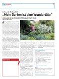 Absolut respektlos - Hessischer Rundfunk - Seite 7