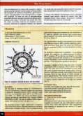 Liposomal cisplatin: LipoPlatin (EJOP) - Regulon - Page 3