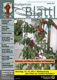 (9,50 MB) - .PDF - Gemeinde Hopfgarten - Land Tirol