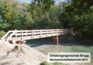 Rechenschaftsbericht 2011 - Brugg