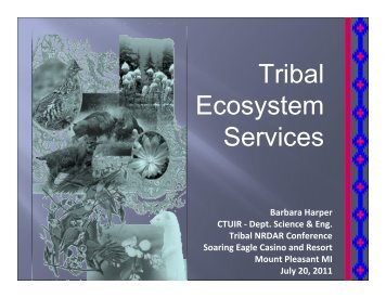 Tribal Ecosystem Services
