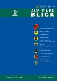 Blick - infoprint Verlag