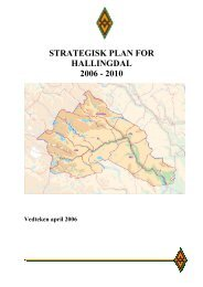 strategisk plan for hallingdal 2006 - 2010 - Regionrådet for Hallingdal