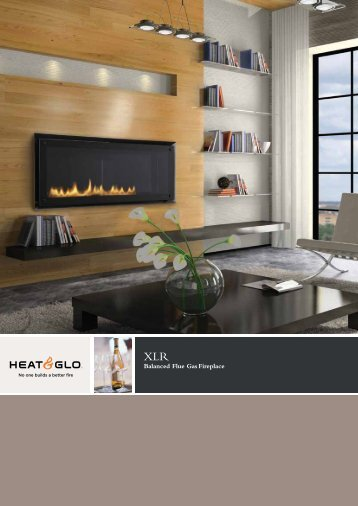 Balanced Flue Gas Fireplace