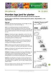 Hvordan lage jord for planter - Hageselskapet