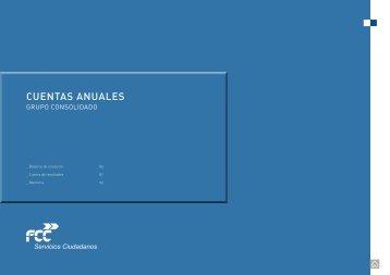 CUENTAS ANUALES - FCC
