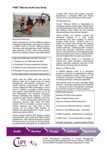 p3m3 case study