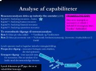 Analyse af capabiliteter - Black Diamond Consulting