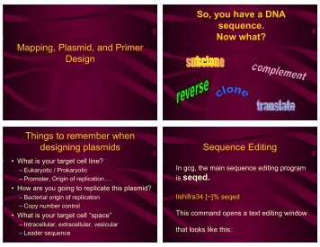 Mapping, Plasmid, and Primer Design So, you have a DNA ...