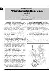 Pithecellobium dulce (Roxb.) Benth. - National Seed Laboratory