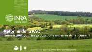 Réforme de la PAC : Aides directes - Inra