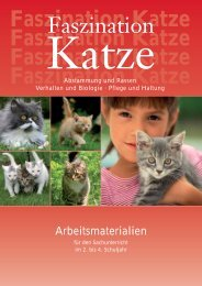 Faszination Katze - Industrieverband Heimtierbedarf