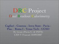 Dual Readout Calorimetry - Infn