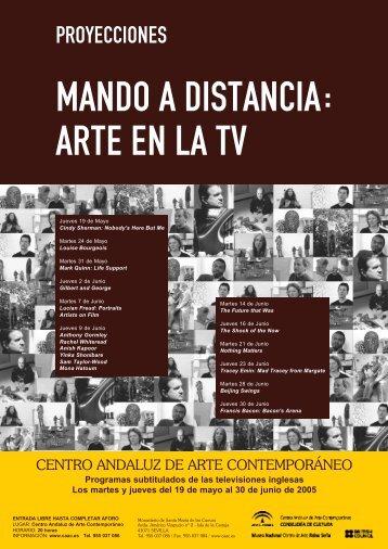 MANDO A DISTANCIA: ARTE EN LA TV