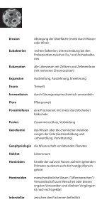 Glossar - Stiftung Drittes Millennium - Seite 4