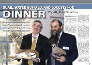 it's all about Tradition – Mishpacha Magazine august 2010