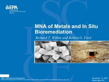 MNA of Metals and In Situ Bioremediation