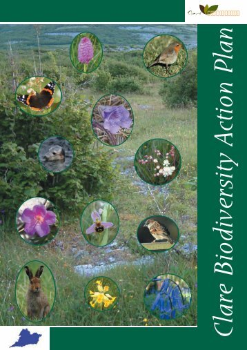 Clare Biodiversity Action Plan - Clare County Library