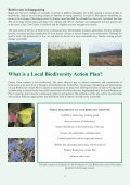 Clare Biodiversity Action Plan - Clare County Library - Page 4