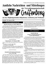 Ausgabe: 28. Januar 2009 Nr. 3 - Hiltpoltstein