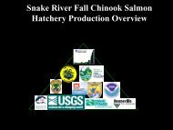Snake River Fall Chinook Salmon Hatchery Production Overview