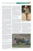 CONTEXTO 35 - Page 7