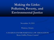 Pollution and Poverty in the Great Lakes River Basin - Canadian ...