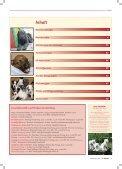 Agility-Klubsieger 2011 - Klub für Terrier e.V. - Seite 2