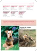 Agility-Klubsieger 2011 - Klub für Terrier e.V. - Seite 4