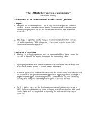 What Affects the Function of an Enzyme?