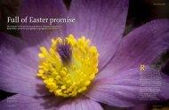 Download a pdf. - Royal Botanic Gardens, Kew