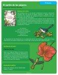 El jardin de los paj.. - Page 2